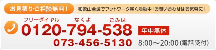 0120-794-538